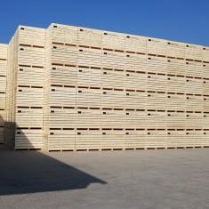 Kartoffeln Lagerung - Holzkisten