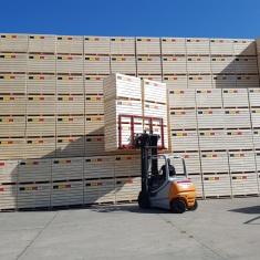 high storage vegetable crates