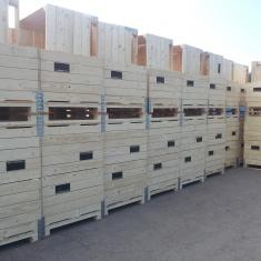 hochwertige Holzkisten für Obst