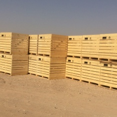 interagra Holzkisten auf der ganzen Welt